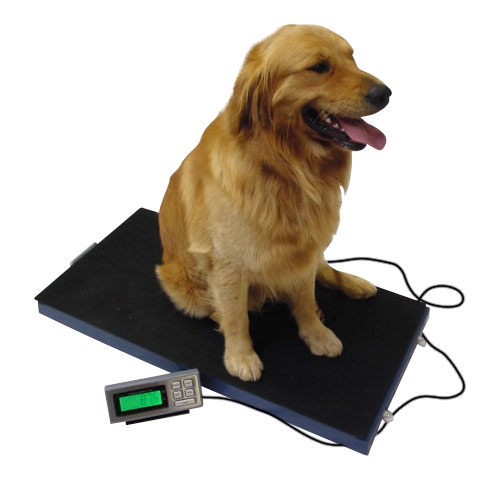Veterinary Scale 400lb x 0.1lb Tree LC-VS-400 Livestock Pet